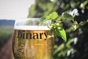 Beer Brewed for today's lifestyle | Table Beer | Brewtapp